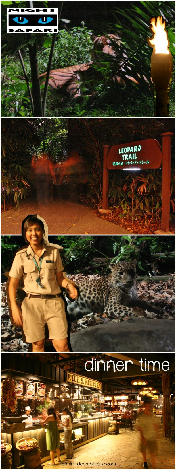 Zoológico Noturno Cingapura