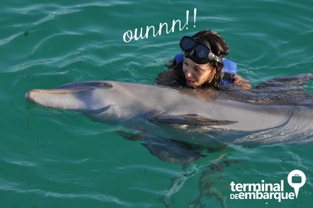 Mergulho com golfinhos em Cancun