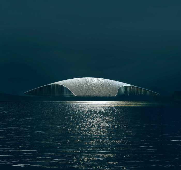 The Whale Noruega